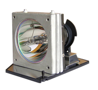 ACER EC.J0601.001 Лампа с модулем