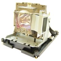 BENQ 5J.J0W05.001 Лампа с модулем