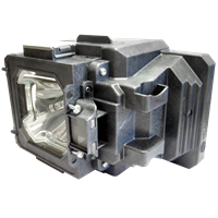 EIKI LC-XG800 Лампа с модулем