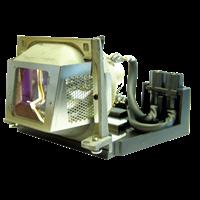 EIKI P8984-1021 Лампа с модулем