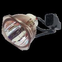 NEC LT170 Лампа без модуля