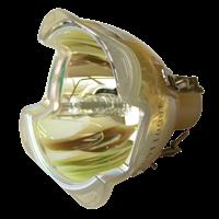 OPTOMA BL-FU250B (SP.86501.001) Лампа без модуля