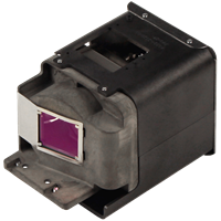 OPTOMA BL-FU310A (FX.PM584-2401) Лампа с модулем