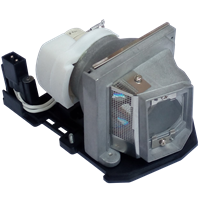 OPTOMA DT2401 Лампа с модулем