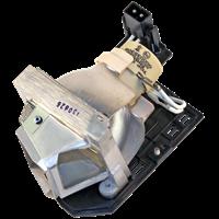 OPTOMA EC300ST Лампа с модулем