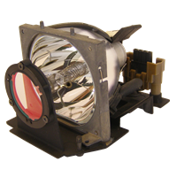 OPTOMA BL-FP120C (SP.86801.001) Лампа с модулем