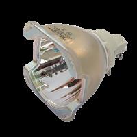 OPTOMA SP.78901GC01 Лампа без модуля