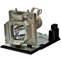 OPTOMA THEME-S HD82 Лампа с модулем