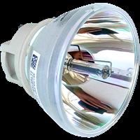 OPTOMA W318STe Лампа без модуля