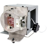 OPTOMA W490 Лампа с модулем