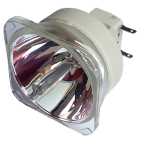 OPTOMA W501 Лампа без модуля