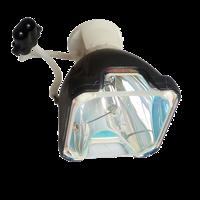 PHOENIX SHP51 Лампа без модуля