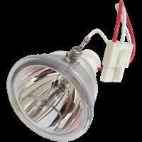 PHOENIX SHP88 Лампа без модуля