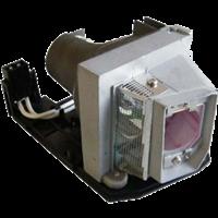 SANYO PDG-DWL100 Лампа с модулем