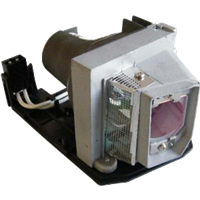SANYO PDG-DXL100 Лампа с модулем