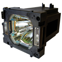 SANYO PLC-XP100BKL Лампа с модулем