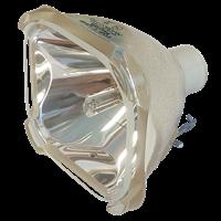 SANYO PLC-XU22B Лампа без модуля