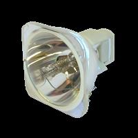 SANYO PLC-XWU30 Лампа без модуля