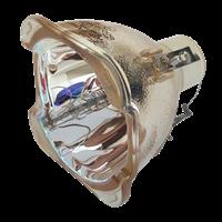 SANYO POA-LMP130 (610 343 5336) Лампа без модуля